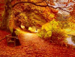 Chemin boisé en automne